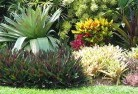 Alcomie Beach and coastal landscaping 8