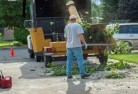 Alcomie Tree cutting services 13